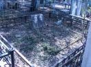 семейные могилы_8
